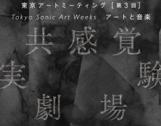 Tokyo Sonic Art Weeks アートと音楽 共感覚実験劇場 (2013)
