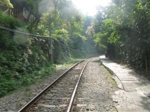 こんな線路沿いを通ります