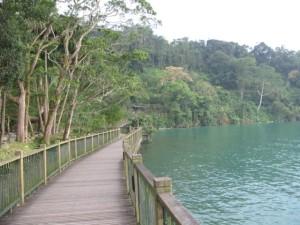 湖沿いの歩道