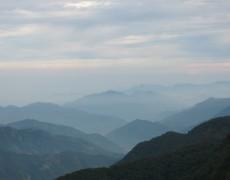 阿里山で録音②(9月13日)