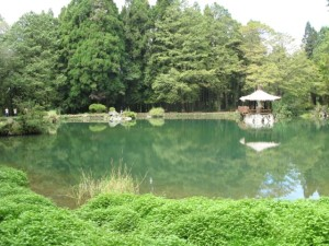 昨日見た池
