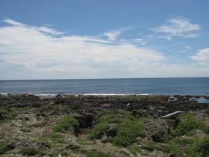 最南端の海岸が見えるぜ!